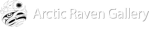 Arctic Raven Gallery
