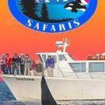 San Juan Safaris Whale & Wildlife Tours